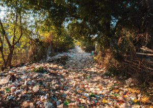Zero Waste Masterplan – a roadmap to gather energies and meet sustainable goals