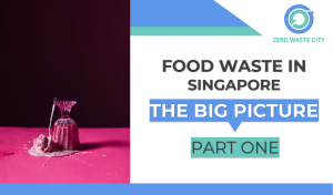 Food waste in SG Part 1 Big Picture