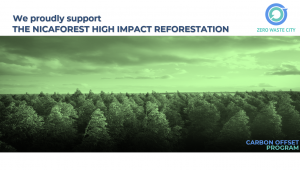 The Nicaforest High Impact Reforestation Program