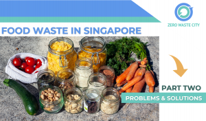 Food waste in Singapore [Part 2] - Problems, and solutions